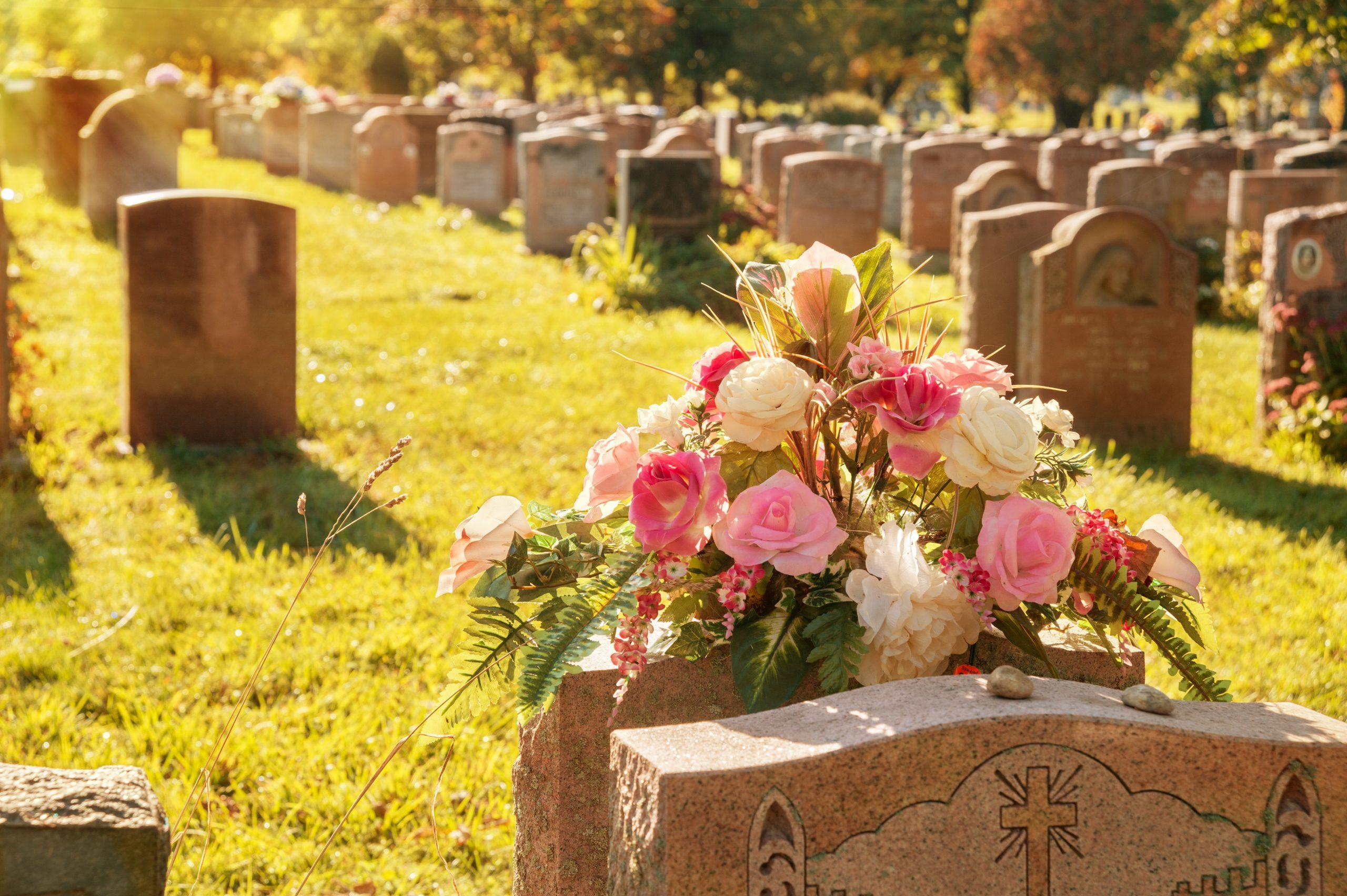 Rosen auf einem Friedhof, Bestattungen Rudolph oHG